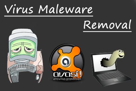 Computer Services, Virus and Maleware Removal